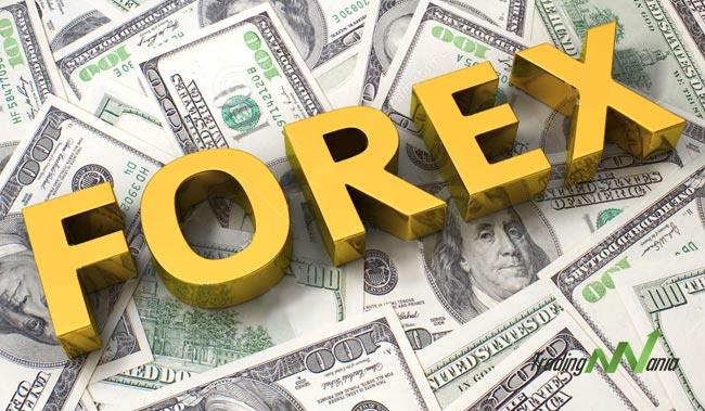 5 Fattori Economici Che Influenzano Il Mercato Forex